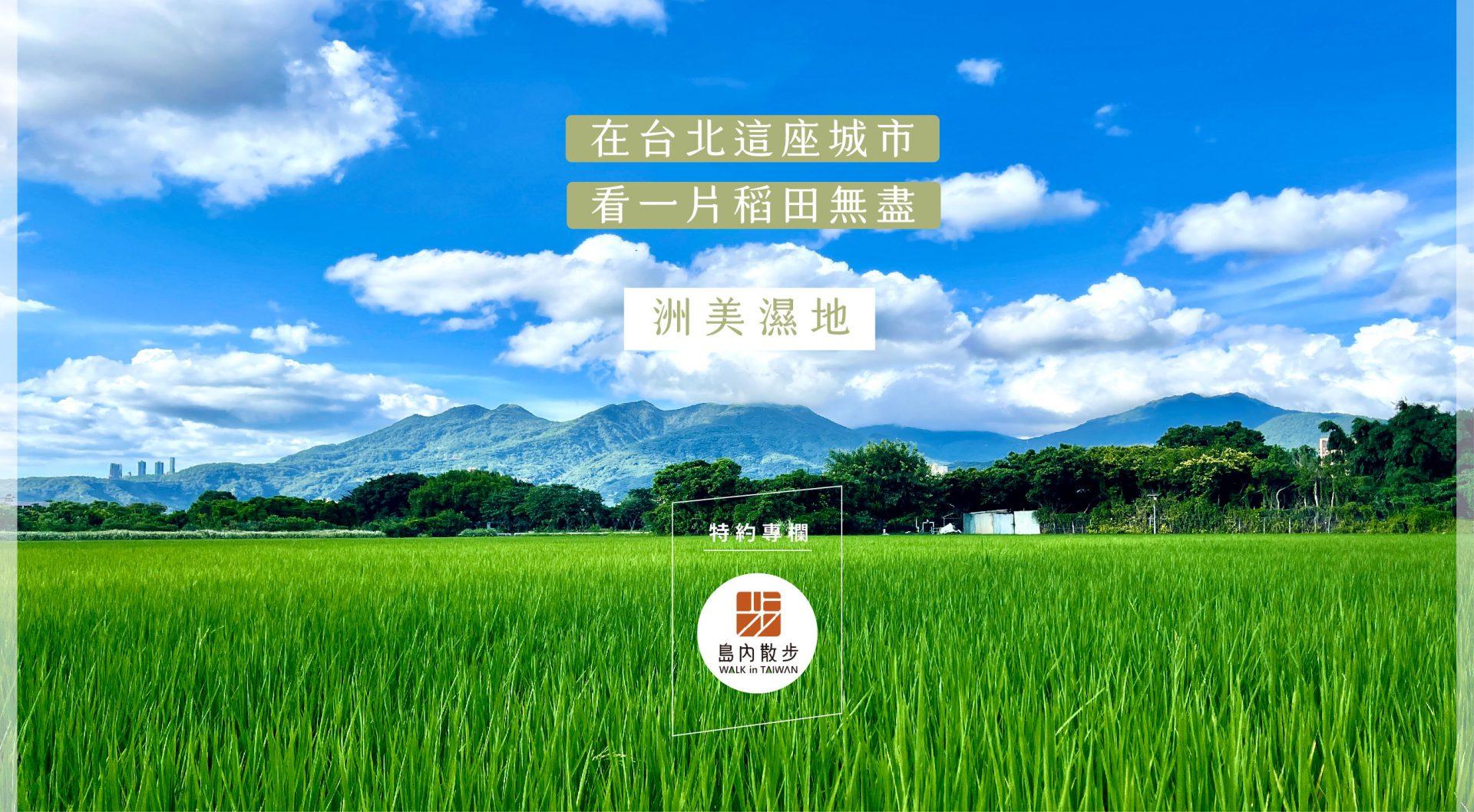 在台北這座城市 看一片稻田無盡 : 洲美濕地