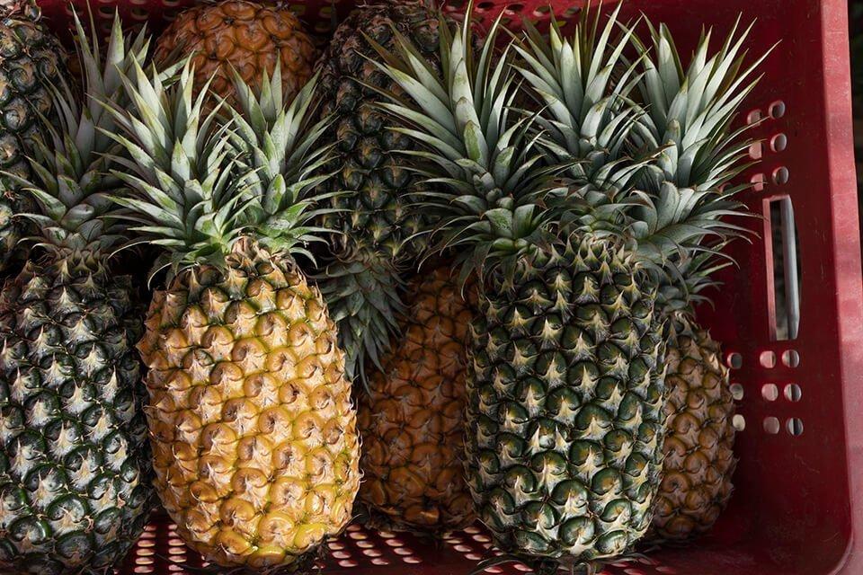 擁抱水果內在美 格外品的華麗變身:格外農品